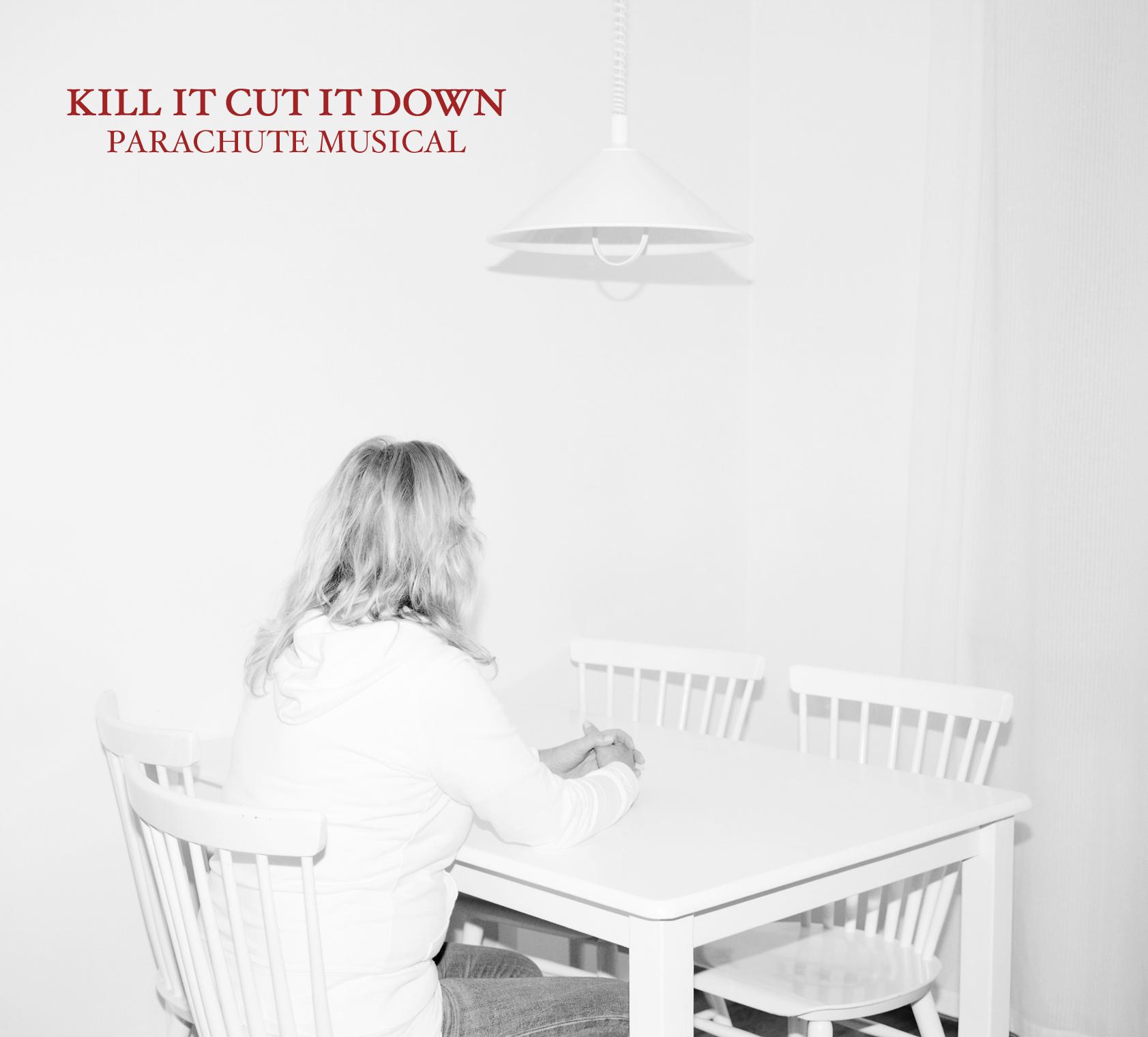 killitcutitdowncover