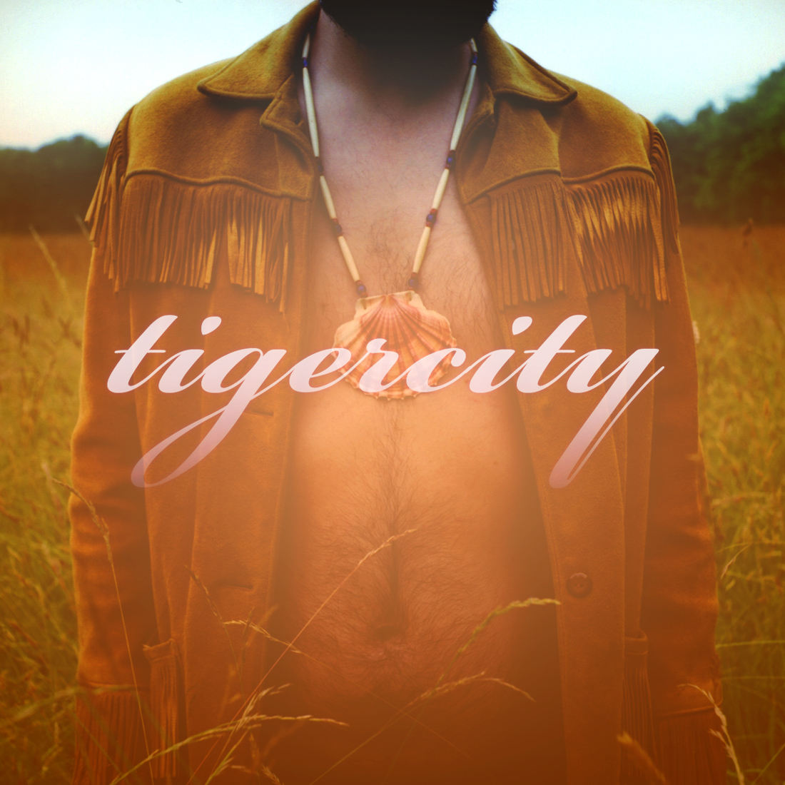 tigercity_cover